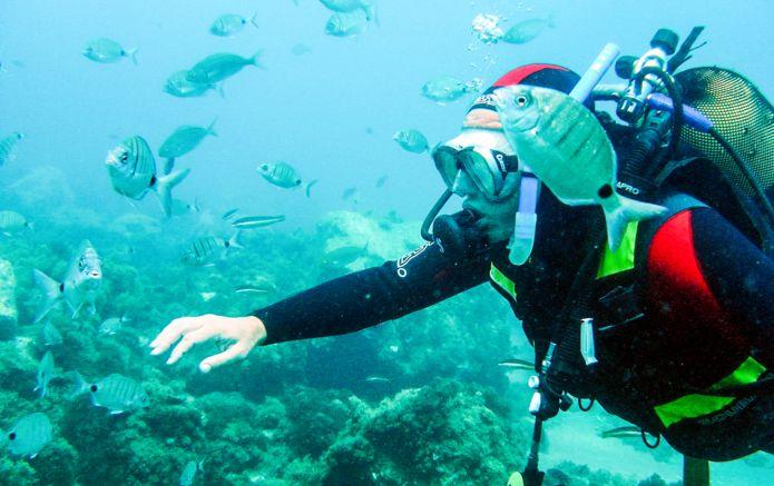 1_Diving_Nerja_Spain.jpg
