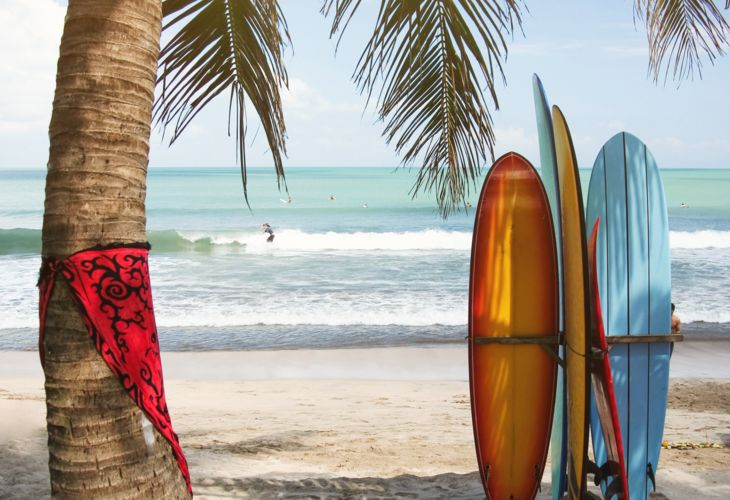 1-Surfing-Palms-Bali-iStock_000007228090.jpg