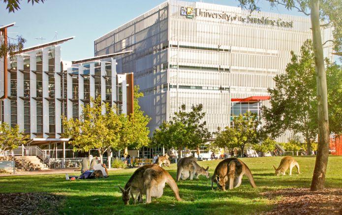 3_USC_Kangaroos_campus_0709_05.jpg