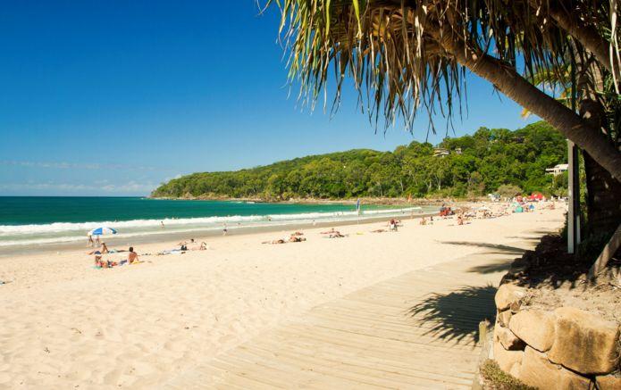 8_shutterstock_Noosa_Beach_Sunshine_Coast_Australia_58328113.jpg