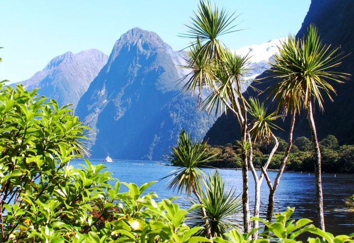 8_dreamstime_New_Zealand_10981562.jpg